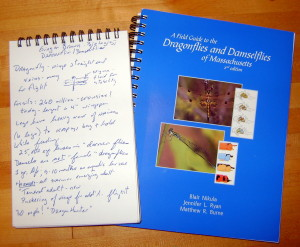 Notes from the story, along with _A Field Guide to Dragonflies and Damselflies of Massachusetts_, an excellent guide.
