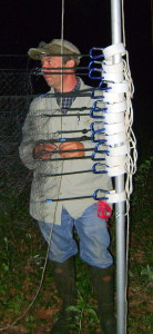 RIDEM biologist Charlie Brown readies the nets for the bat capture.