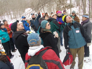Killingbeck directs the crowd toward characteristics of a black birch.